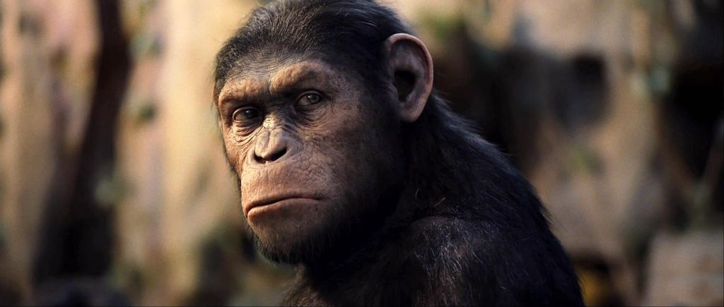 Rise of the Planet of the Apes Scene