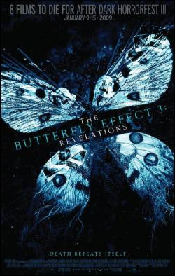 The Butterfly Effect: Revelations Poster