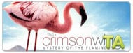 The Crimson Wing: Mystery of the Flamingos: Wings