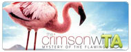 The Crimson Wing: Mystery of the Flamingos: On the Marsh