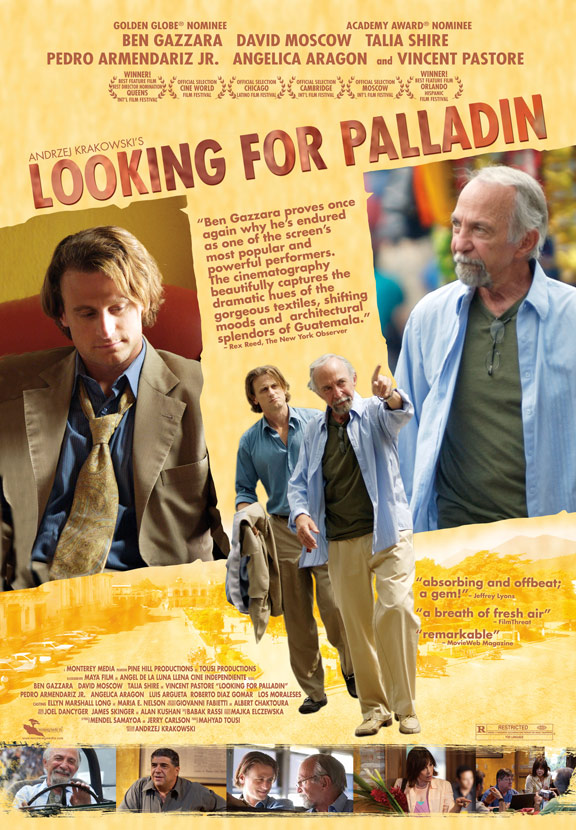 Looking for Palladin Poster