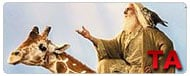 Evan Almighty: Teaser Trailer