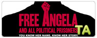 Free Angela & All Political Prisoners: TIFF - Press Conference VII