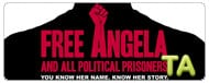 Free Angela & All Political Prisoners: TIFF - Press Conference V