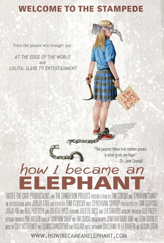 How I Became an Elephant Poster