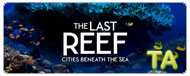 The Last Reef 3D: Ocean Acidification