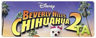Beverly Hills Chihuahua 2: Responsible Pet Owners Event - Melanie Monteiro