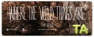 Where the Wild Things Are: What's Your Story