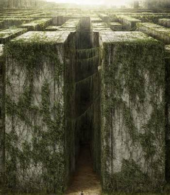 Link to The Maze Runner (2014) Trailer